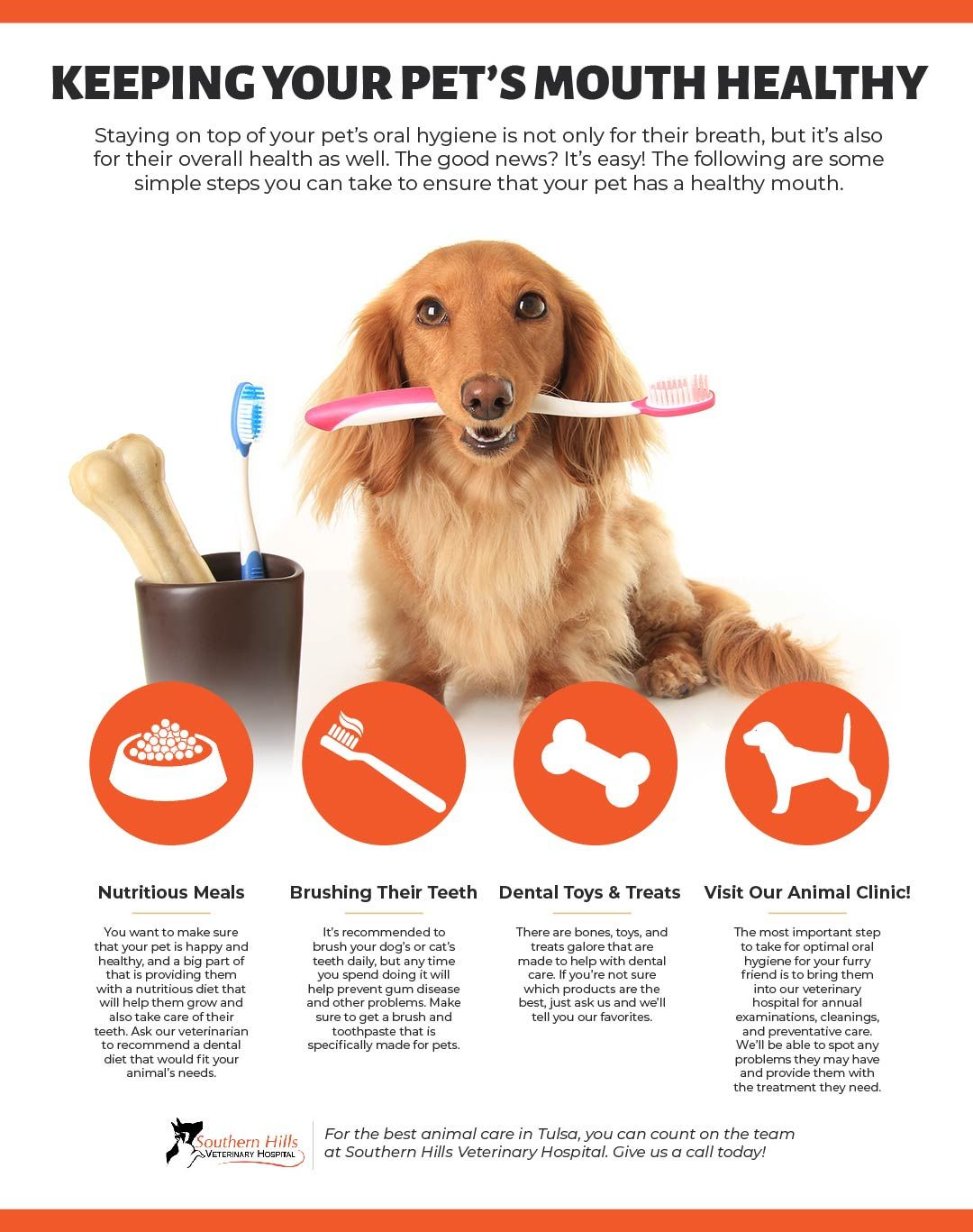Keeping Pet's Mouth Healthy